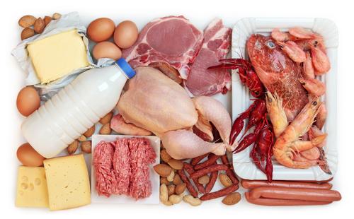 bílkoviny
