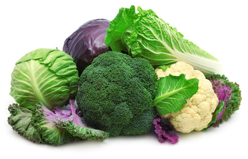 zelna dieta